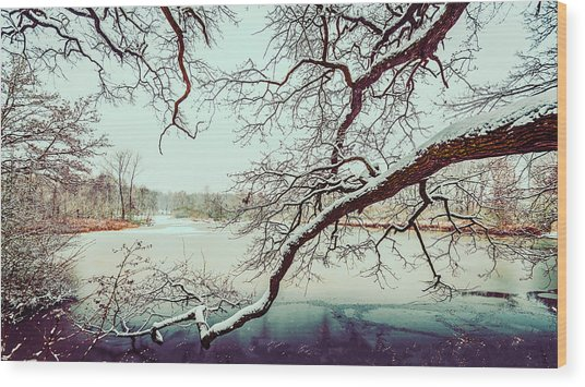 Power Of The Winter Wood Print