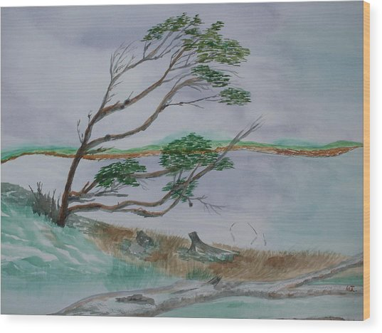 Powerful Winds Of Tierra Del Fuego Argentina  Wood Print