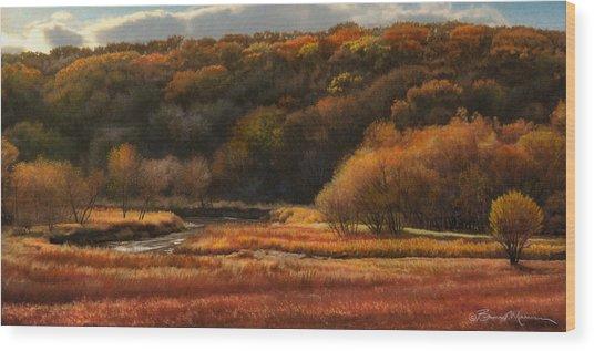 Prairie Autumn Stream No.2 Wood Print