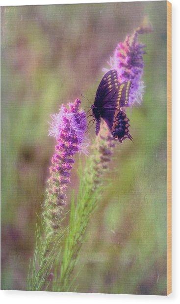 Prairie Butterfly Wood Print