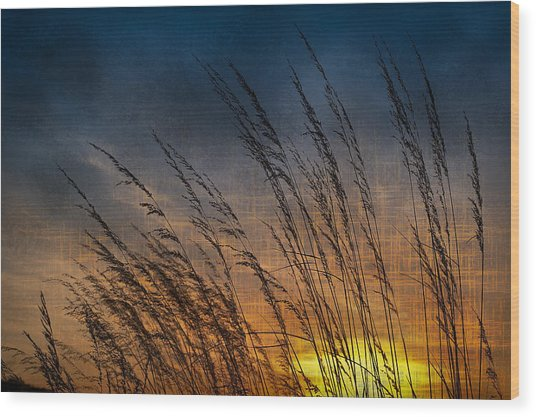 Prairie Grass Sunset Patterns Wood Print