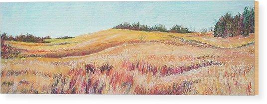 Prairie IIi Wood Print by Lucinda  Hansen