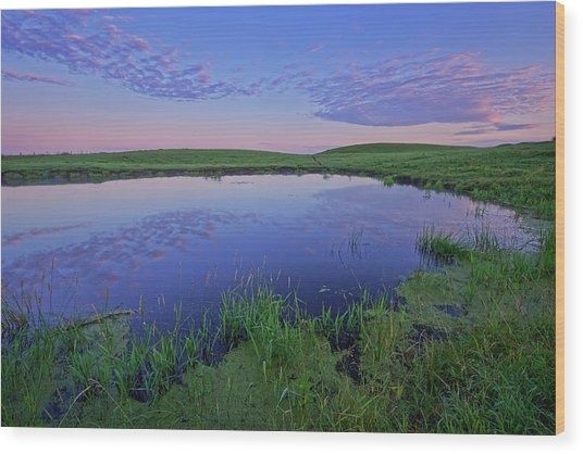 Prairie Reflections Wood Print