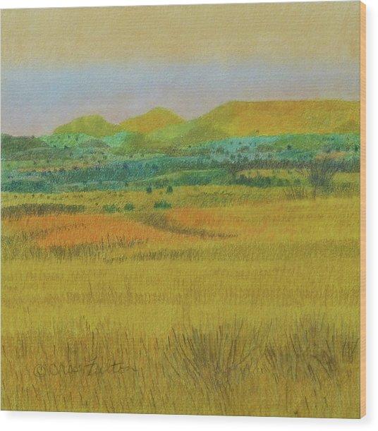 Prairie Reverie Wood Print