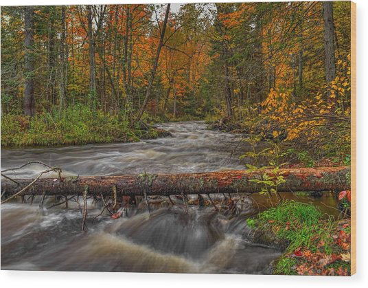 Prairie River Tree Crossing Wood Print
