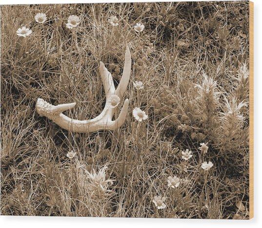 Prairie Spring Wood Print