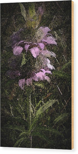 Prairie Weed Flower Wood Print