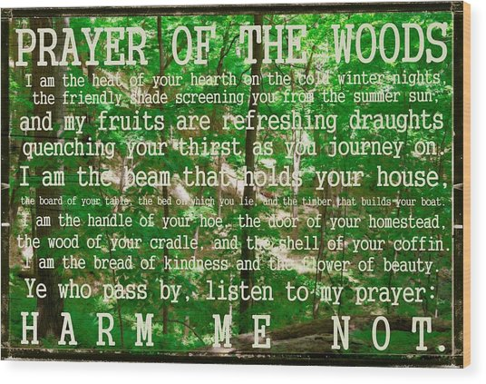 Prayer Of The Woods 2.0 Wood Print
