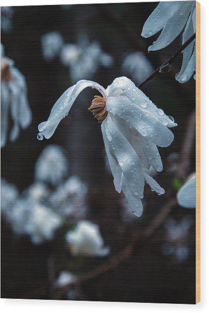 Prayers Of Flowers Wood Print