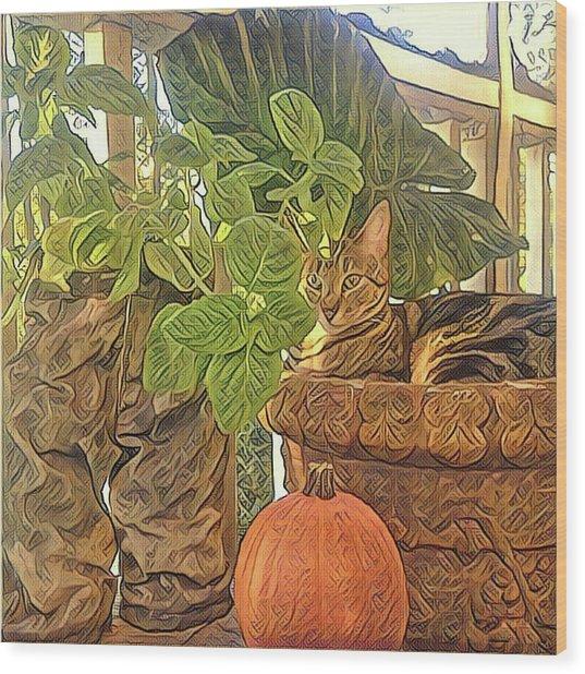 Precious Pumpkin Wood Print