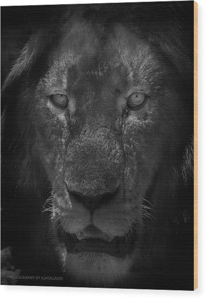 Preditor Eyes Wood Print