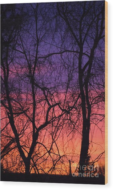 Wood Print featuring the photograph Prelude To The Cold by Patti Whitten