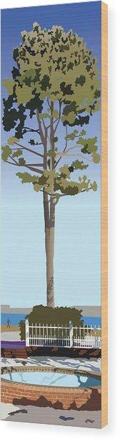 Prescott Park In Winter Wood Print by Marian Federspiel