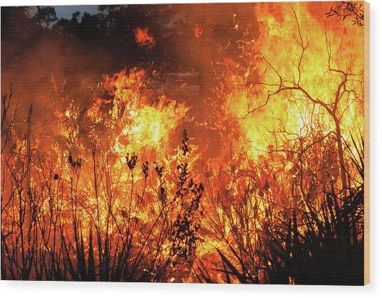 Prescribed Burn Wood Print