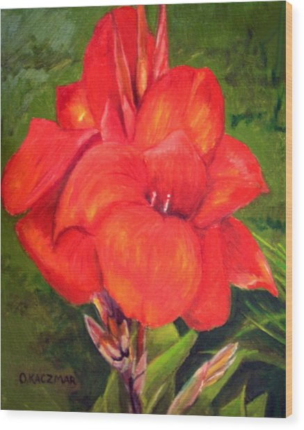 Presidential Canna Wood Print by Olga Kaczmar