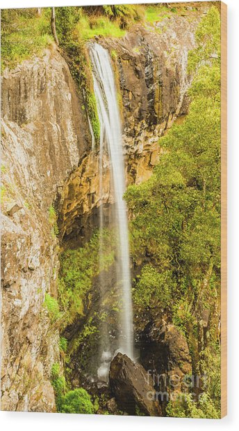 Preston Falls Tasmania Wood Print