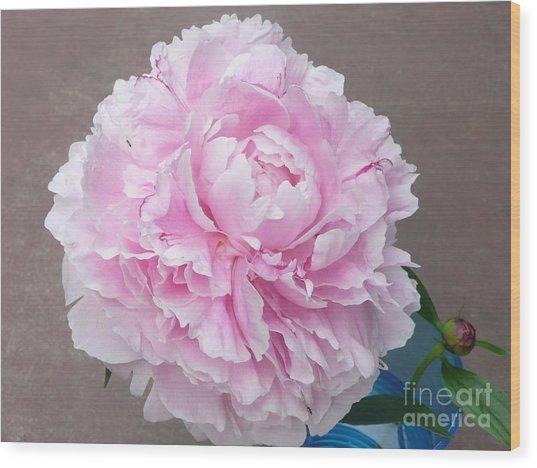 Pretty And Pink Wood Print by Barb Montanye Meseroll