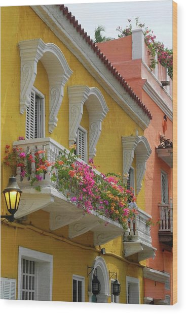 Pretty Dwellings In Old-town Cartagena Wood Print