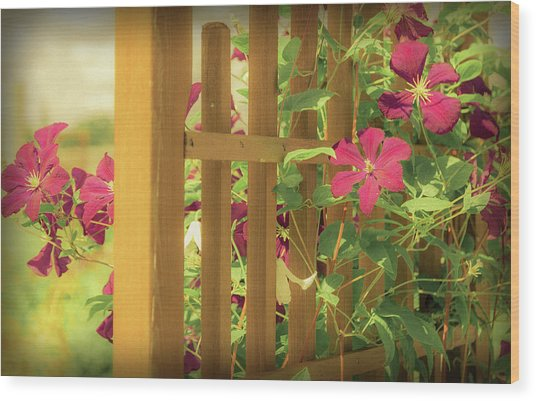 Pretty Flower Garden Wood Print