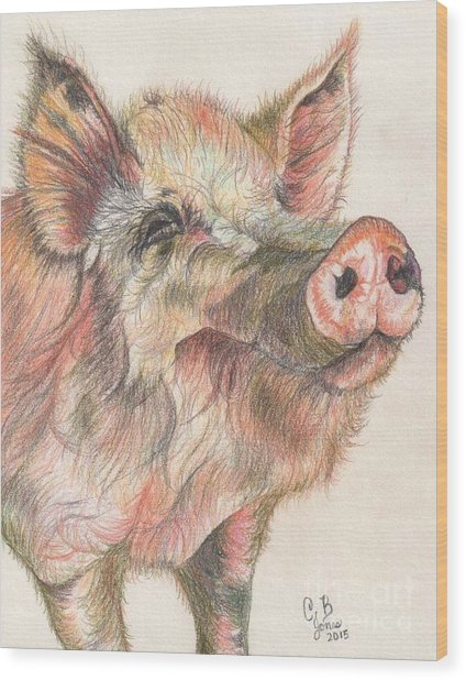 Pretty Imporkant Pig Wood Print by Chris Bajon Jones