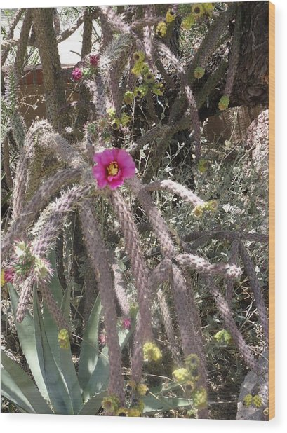 Flower Is Pretty In Pink Cactus Wood Print