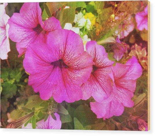 Pretty Pink Petunias Wood Print
