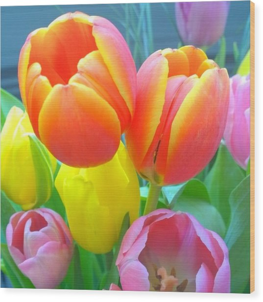 Pretty #spring #tulips Make Me Smile Wood Print