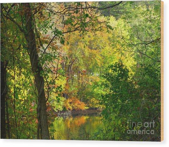 Prettyboy Of Autumn Wood Print