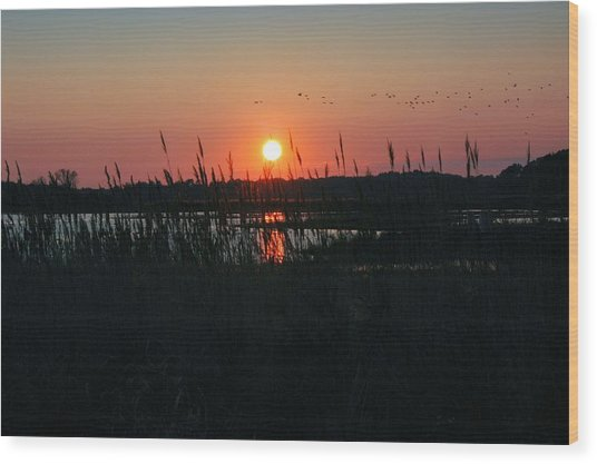 Primehook Sunset Wood Print by See Me Beautiful Photography