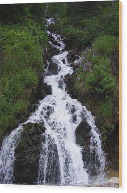 Princess Falls Wood Print