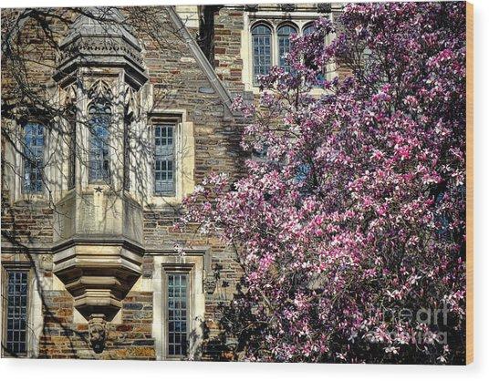 Princeton University Memories Wood Print