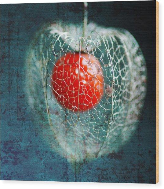 Prison Of Love Wood Print