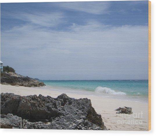 Private Bermuda Beach Wood Print by PJ  Cloud