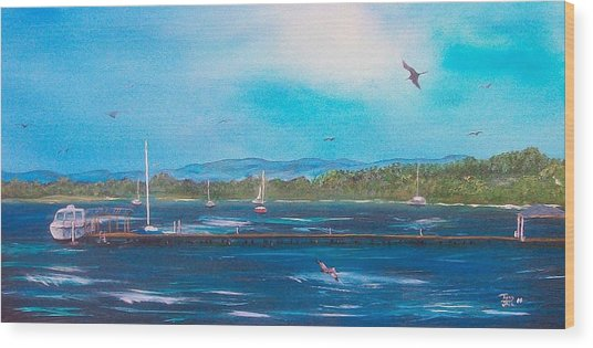 Private Dock Wood Print by Tony Rodriguez