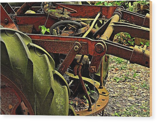 Product Of Age Wood Print by William Jones