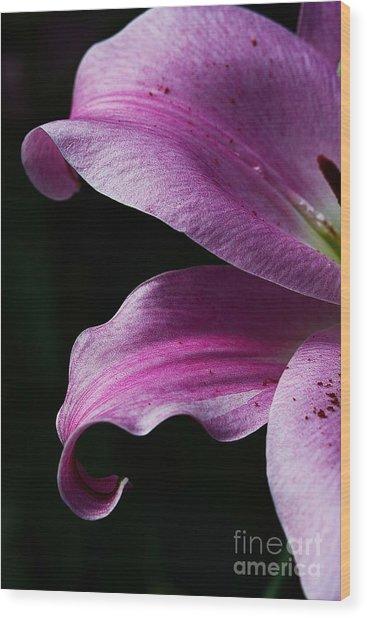 Profile In Pink Wood Print
