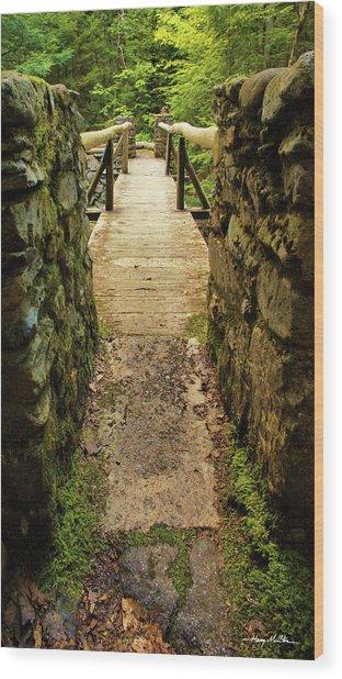 Prospective Memorial Bridge Wood Print