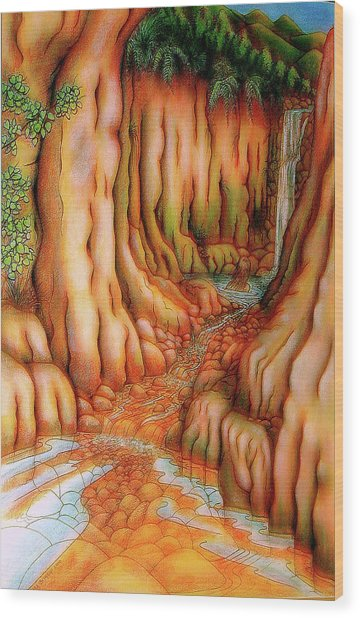 Prosperity Waterfall 1 Wood Print by Barbara Stirrup