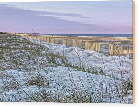 Protecting Dunes And Turtles Wood Print