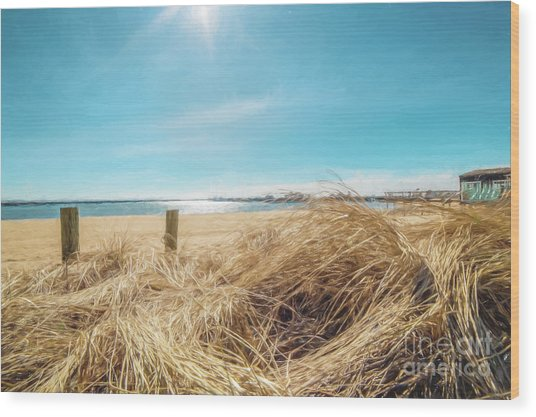 Provincetown Harbor Wood Print