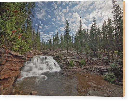 Wood Print featuring the photograph Provo River Falls by Wesley Aston