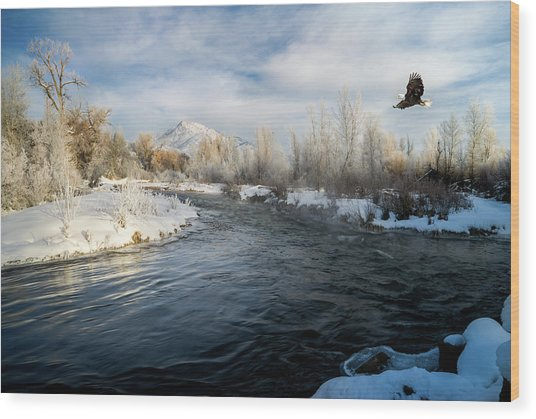 Provo River In Winter Wood Print