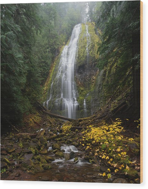 Proxy Falls In Autumn Wood Print