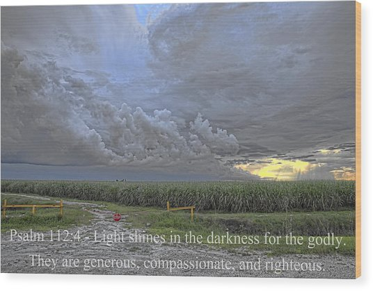 Psalm 112 4  Wood Print by Roberto Aloi