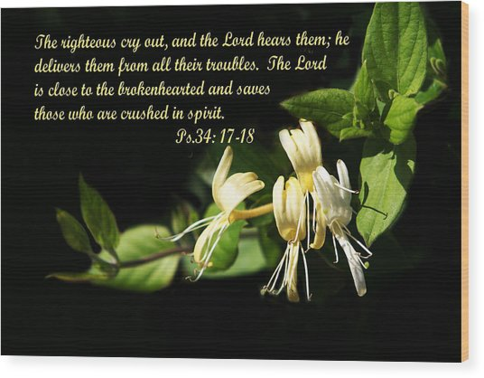 Psalms Scripture With Honey Suckle Flowers Wood Print
