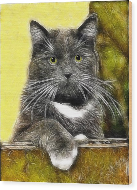 Pssst ... Where's The Treats Wood Print by Madeline  Allen - SmudgeArt