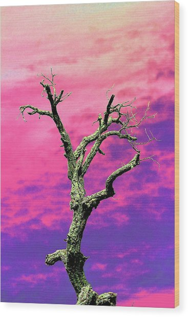 Psychedelic Tree Wood Print