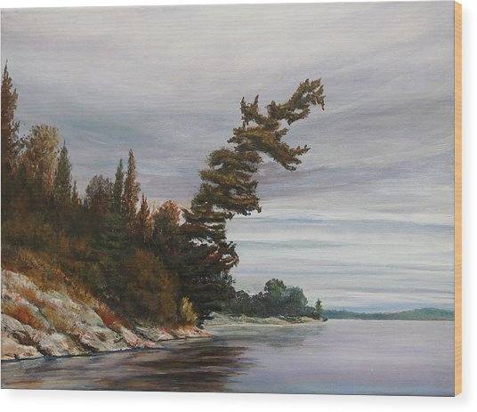 Wood Print featuring the painting Ptarmigan Bay by Ruth Kamenev