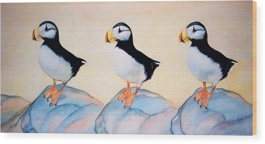 Puffin Rock Wood Print by Dee Van Houten