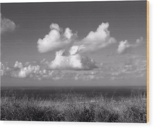 Puffy Clouds Wood Print